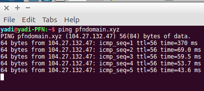 1.2 – Ping Domain pfndomain.xyz